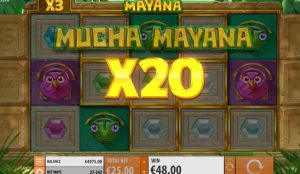 Mucha Mayana Feature multipliers