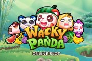 New Slot Review Wacky Panda