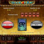 Novomatic - Book of Ra - Rules - Free spins and scatter symbol - casinogroundsdotcom